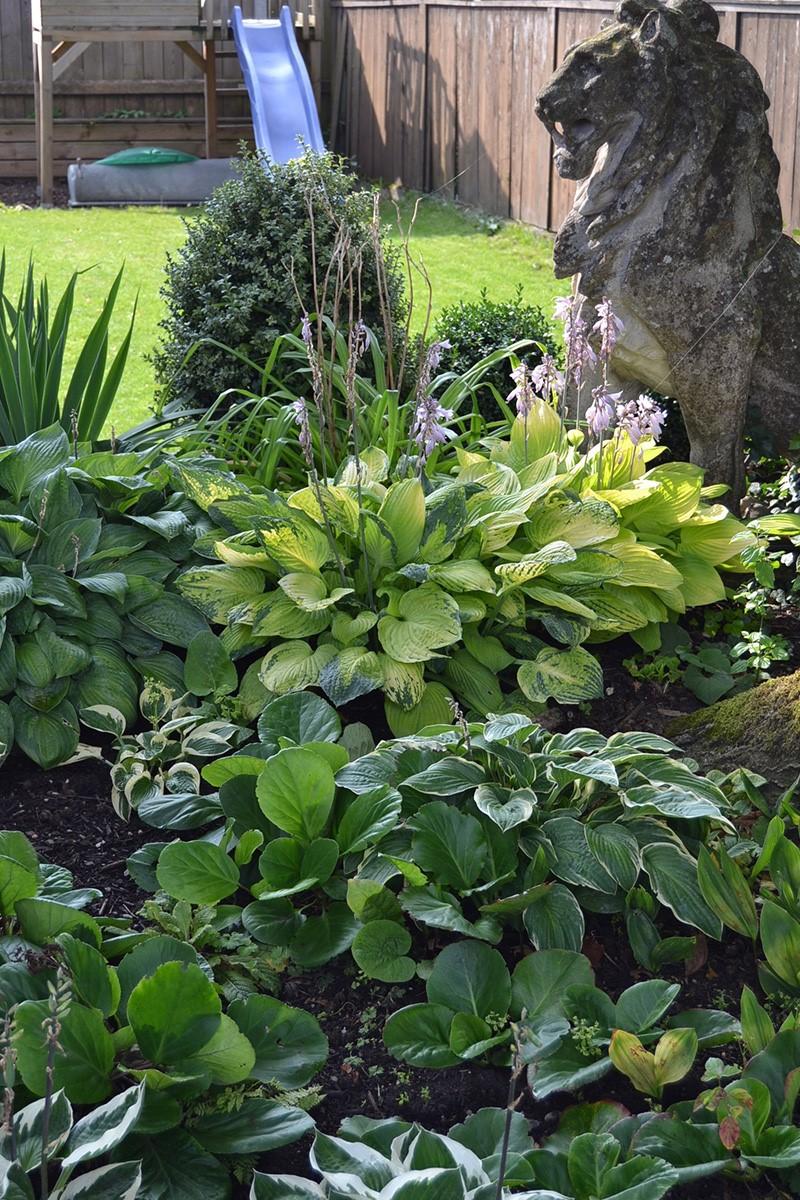 Pflanzen & Blumen — Wolther & Baur